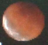 Gerhana 8 okt 2014-18-40 wib